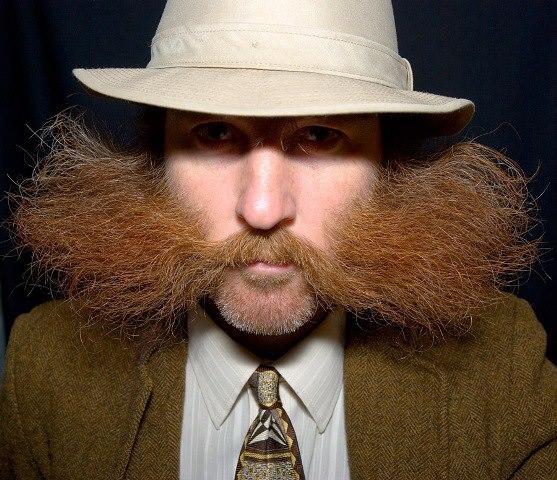 beardblog.se beardstache