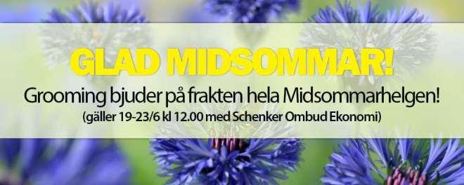 erbjudande från grooming.se