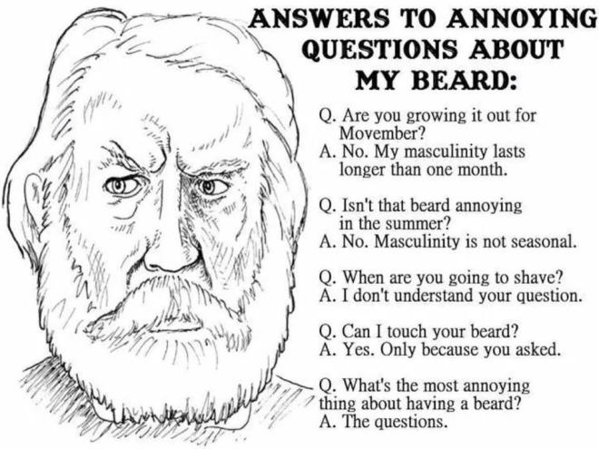 annoying questions about beard
