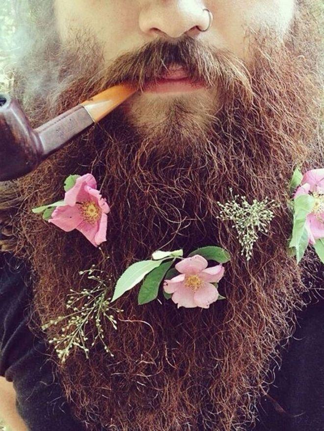 beard flower